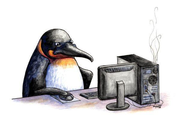 Intranet-gebruikersonderzoek-communicatiebureau-De-Walvis
